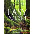Lasy Polski The forests od Poland